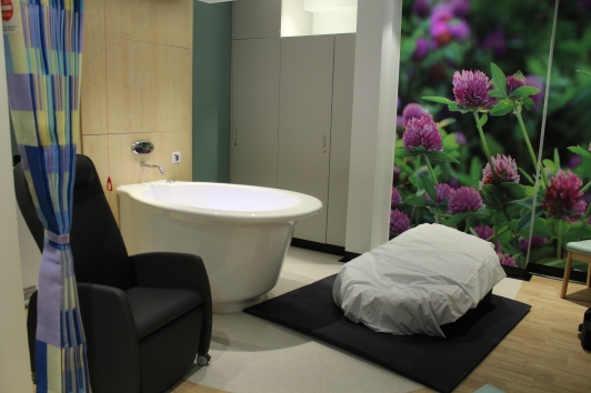 Waterlily Birth Centre - Clover Room